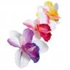 Pique décoration orchidée